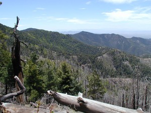 Chiricahua Wilderness