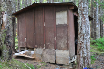 Cabin in the Tongass Wilderness