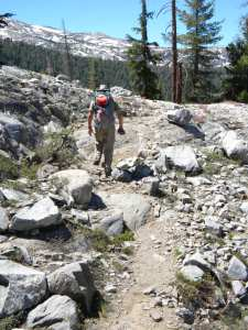 Wilderness Watch's efforts help preserve the Emigrant Wilderness--Black Bear Trail